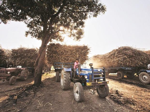 Agriculture, farm