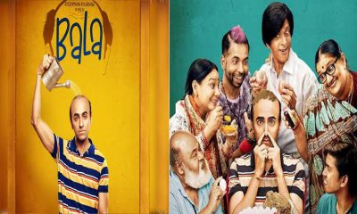 Ayushmann' Bala collects Rs 20 crores on Sunday, Latest update