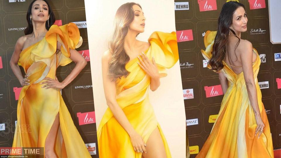 Malaika Arora's Controversial Photos, Photoshoot went viral