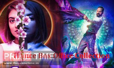 Trance Box Office Collection Report and Review