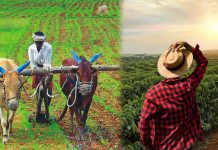 PM Kisan Samman Nidhi 8.19 crore farmers got first installment of Rs 2,000, if you don't get it, do it