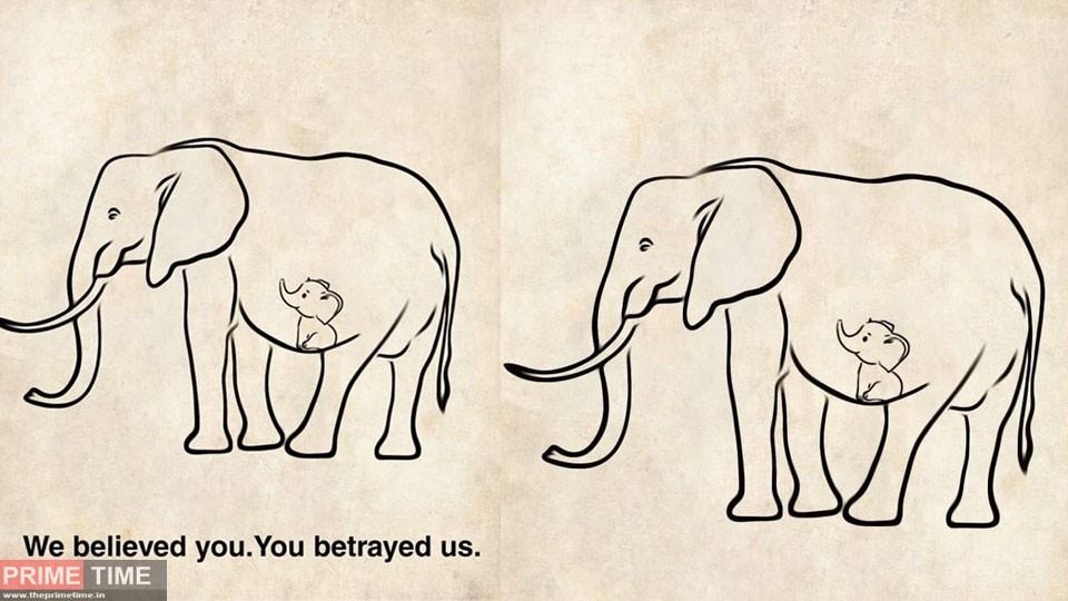 elephant-death-in-kerala