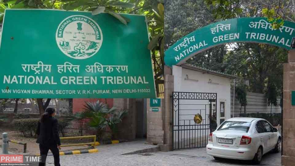 NGT seeks report from Delhi Chief Secretary on encroachment on government land in Hyderpur!