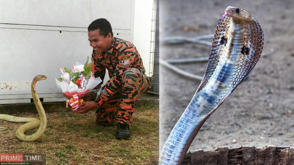 man-married-snake