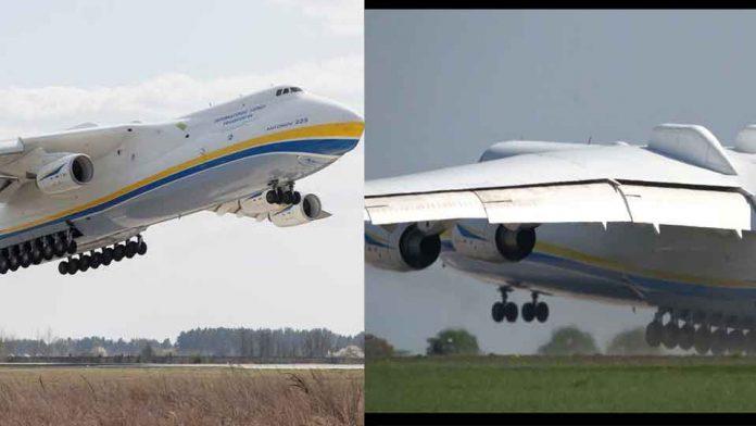 largest plane