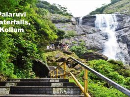 Palaruvi-Waterfalls,Kollam